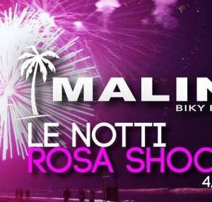 Notte Rosa 2014 al Malindi Cattolica