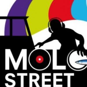 Velvet Rimini alla Molo Street Parade 2014